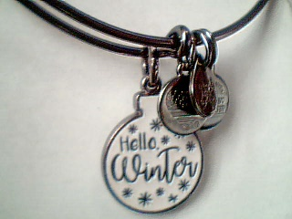 Alex And Ani - Alex and Ani Charm Bracelets, Earrings, Necklaces - image #2